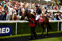 Race 4 The Qatar King George Stakes 2016.07.29