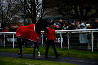 Race 5 Winner Plant And Access Handicap Hurdle 2017.12.26
