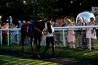 Race 6 The Visit attheraces.com Handicap Steeple Chase 2019.08.22