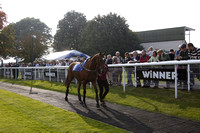 Race 4 The Southern Water Efficiency Handicap Steeple Chase 2015.10.03