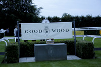 Racing at Goodwood 2013
