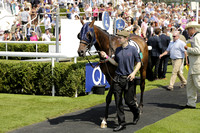 Race 1 Goodwood. The Gordon's Stakesi. 20130801.  Race winner Broughton owned by Sheikh Hamdam bin Mohammed Al Maktoum
