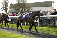 Race 2 The Totepool Home of Pool Betting Handicap Steeple Chase 2014.02.23
