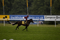 Race 3 Goodwood The Betfair Celebration Mile. On Saturday 24 August 2013. www.polopictures.co.uk