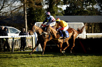 Race 3. The George Smith Horseboxes Novices Hurdle Race 2016.02.18