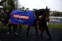Race 3 The totepool Southern National Handicap Steeple Chase 2015.11.15