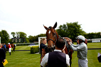 Race 4 The Wright Joinery Company Stakes 2016.05.19