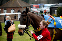 Race 2. The Porto Racing Specialist Horse Racing Saddlery Novices Hurdle Race 2017.02.14