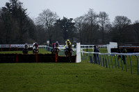 Race 6 The Toteexacta Pick the First and Second Handicap Hurdle Race 2014.02.23