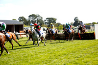 Race 3. The Porto Racing Specialist Horse Racing Saddlery Mares Handicap Hurdle Race 2017.04.12
