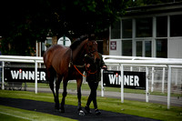 Race 1 The Have Your Wedding at Fontwell Park Race Course Conditional Jockeys Mares Handicap Hurdle Race 2017.06.06
