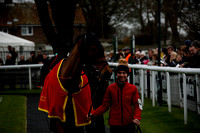 Race 2. The totequadpot Handicap Steeple Chase 2017.02.26