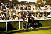 Race 6 The Goodwood Racehorse Owners Group Stakes  2016.10.09