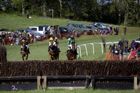 Chiddingfold, Leconfield & Cowdray Hunt Point to Point at Parham on Saturday 2014.04.26